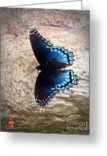 Mariposa Azul Greeting Card