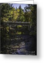 Markleeville Creek Greeting Card