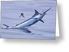 Marlin Magic Greeting Card