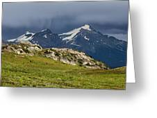 Marmot Meadow Greeting Card