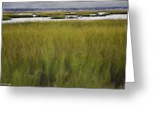 Marsh At Milford Point Greeting Card