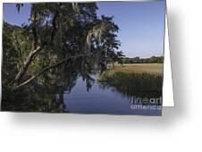 Marsh Creek Greeting Card