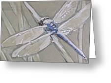 Marsh Dragonfly Greeting Card