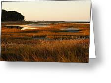 Marsh Grass Autumn Greeting Card
