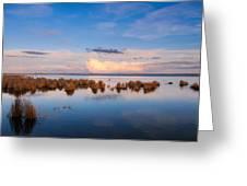 Marsh Land Greeting Card