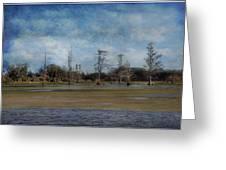 Marsh Lands  Greeting Card