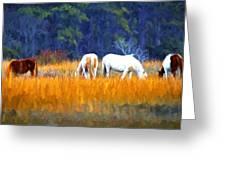 Marsh Ponies Greeting Card