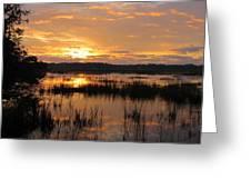 Marsh Sunrise 2 Greeting Card