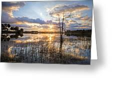 Marsh Sunrise Greeting Card