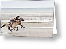 Marsh Tacky Race Greeting Card