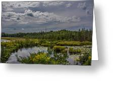 Marsh Under The Clouds Greeting Card