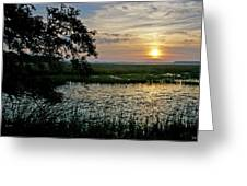 Marsh View Greeting Card