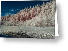 Marshall Pond In Infrared Greeting Card