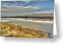 Marshlands 2 Greeting Card
