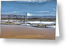 Marshlands Greeting Card