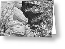 Martin Luther King Memorial Through The Blossoms Greeting Card by Mike McGlothlen