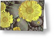Mary Ann Greeting Card