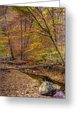 Maryland Country Roads - Autumn Colorfest No. 7 - Catoctin Mountains Frederick County Md Greeting Card