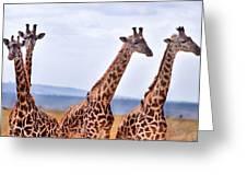 Masai Giraffe Greeting Card