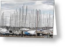 Glen Cove Mast Appeal Greeting Card