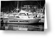 Master Of The Harbor Greeting Card by Melinda Ledsome