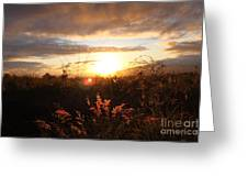 Maui Kulamalu Sunset Greeting Card