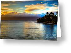 Maui Palm Sunset Greeting Card