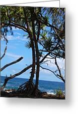 Maui Tree Silhouette Greeting Card