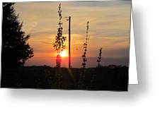 May 3 2013 Sunset Greeting Card