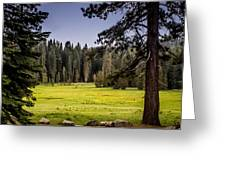 May I Intrude On Your Meadow Greeting Card