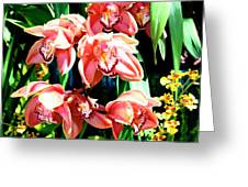 Joy Orchids Greeting Card
