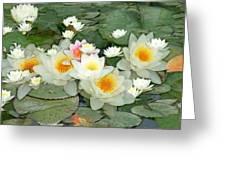 May Pond Greeting Card