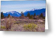 Mazama From Wolf Creek Greeting Card