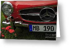 Mb 190 Greeting Card