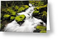 Mccord Creek, Columbia Gorge Greeting Card
