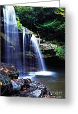 Mccoy Falls Birch River Greeting Card