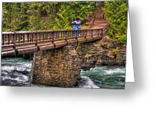 Mcdonald Creek Bridge Greeting Card