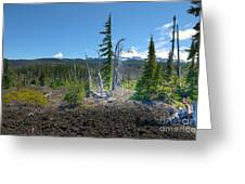 Mckenzie Pass Scenic View Greeting Card by John Kelly