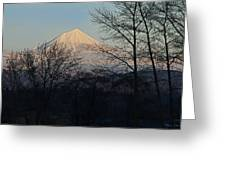 Mclaughlin Late Winter Day Greeting Card