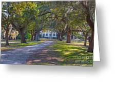Mcleod Plantation Greeting Card