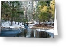 Meadow Brook Pond 1 Greeting Card