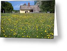 Meadow Cottage Greeting Card by Stephen Norris