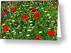 Meadow Flowers - Digital Oil Greeting Card