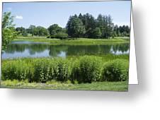 Meadow Lake Greeting Card