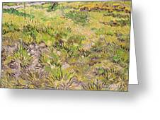Meadow With Butterflies Greeting Card