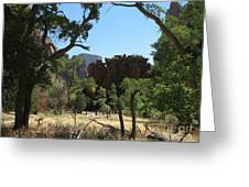 Meadow Zion Park Greeting Card