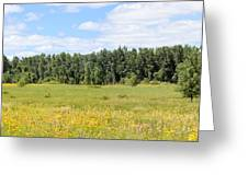 Meadowland Greeting Card