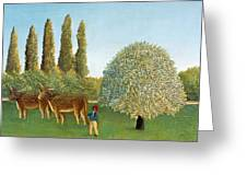 Meadowland. The Pasture  Greeting Card
