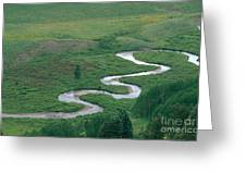 Meandering East River Greeting Card