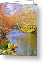 Meandering Stream  Greeting Card